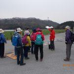 3月30日 山城歩きの好シーズン 信長軍の虎御前山城と浅井軍の丁野山城を歩く