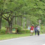 6月23日(日) DW(地元ガイドとまち歩き) 自然と歴史の宝庫 余呉湖一周ウオーキング