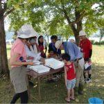 8月10日 夏休み自然体験学習 余呉湖で魚つかみをしませんか